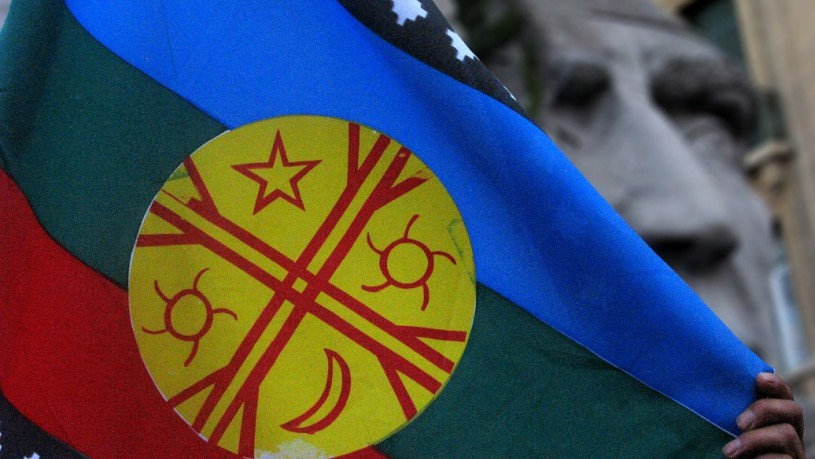 The Mapuche Flag