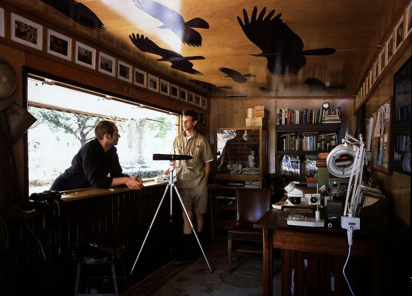 Inside Mark Dion's Urban Wildlife Installation