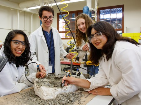Four Interns in white lab coats gather around a dinosaur fossil